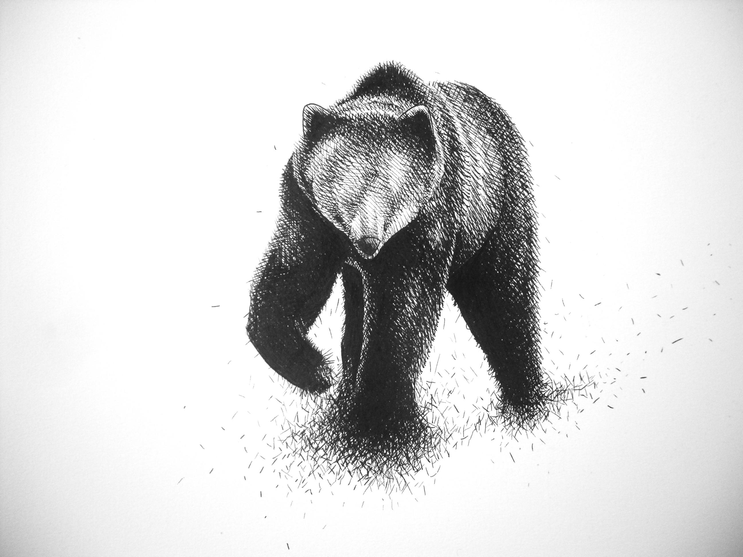 il mio orso si scioglie…