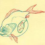 Fertile Fish