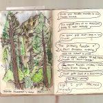 Roadtrip of California –  Yosemite Campsite