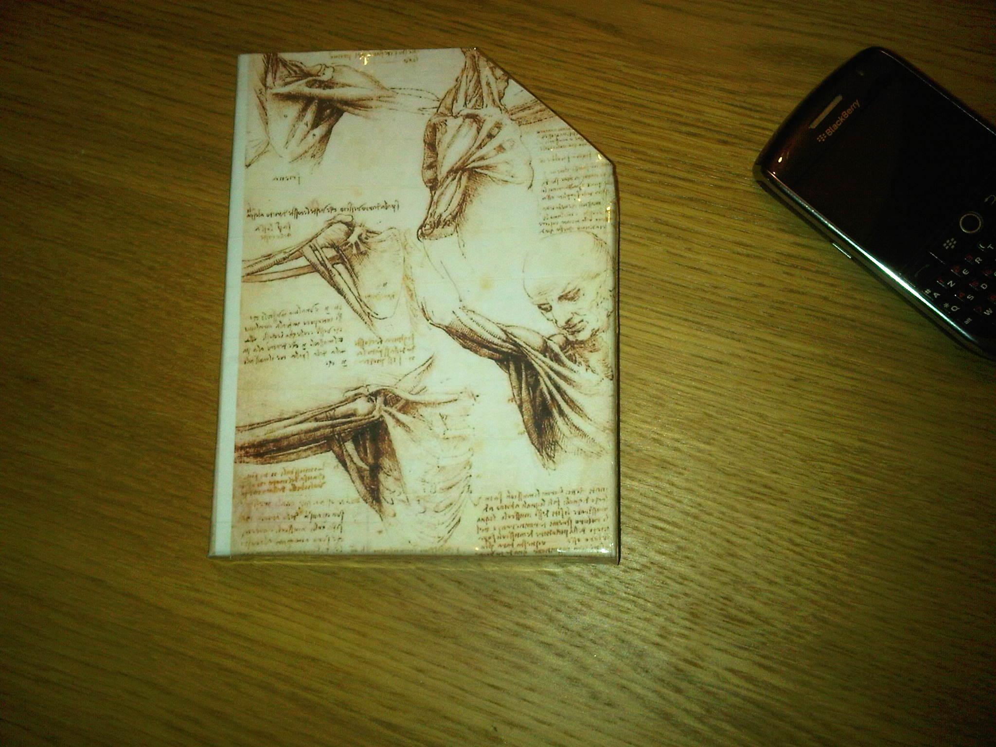 Leonardo Da Vinci Sleeve