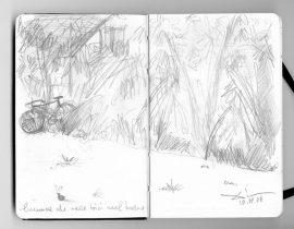 lumaca che vede bici nel bosco