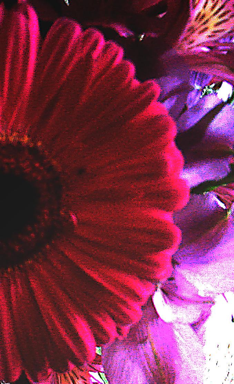 Flowerize Your Moleskine