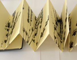 Lavender.fold 02