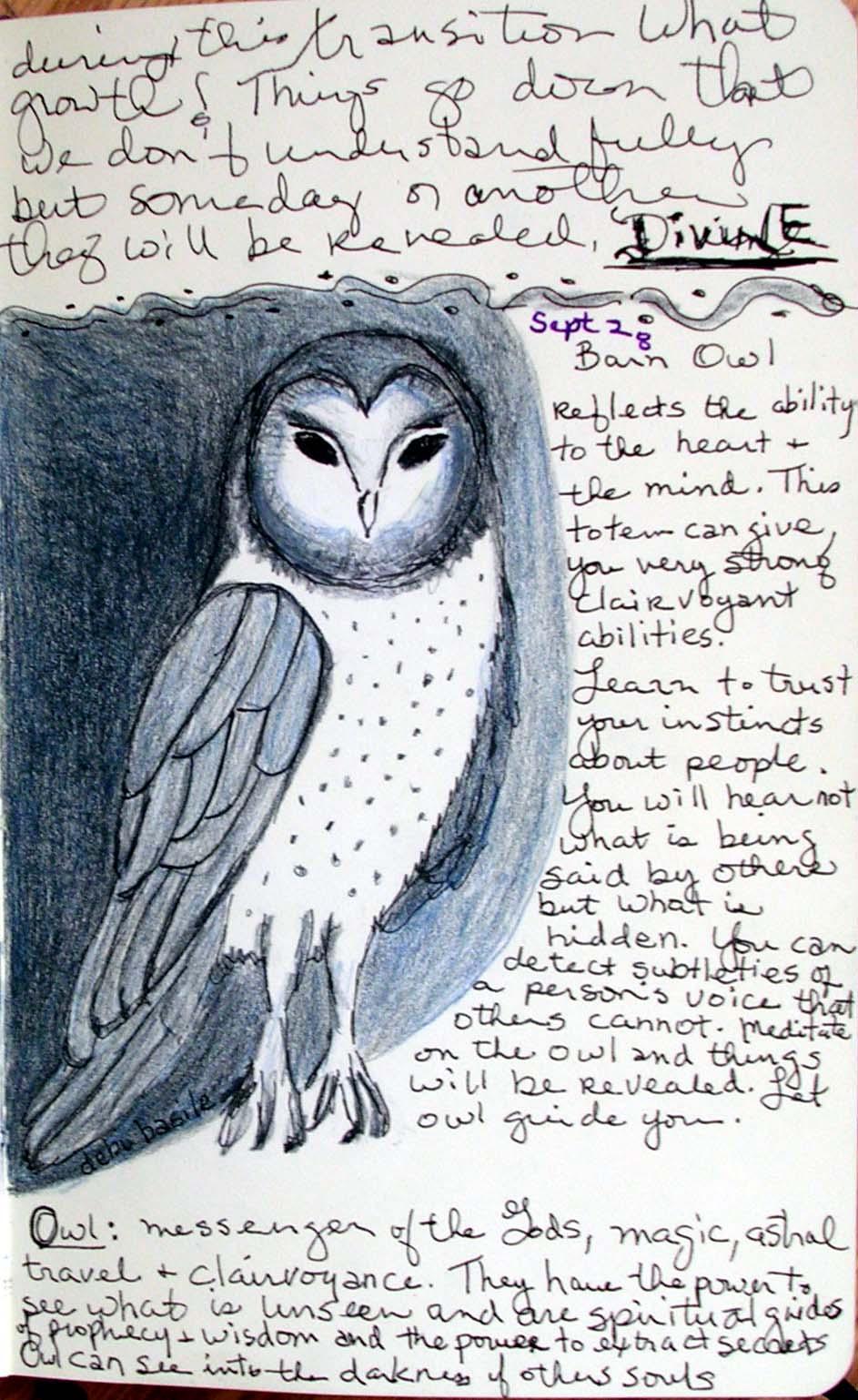 The Night Eagle, Owl