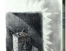boxboxcatcat