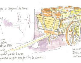 Carro recolección de uva