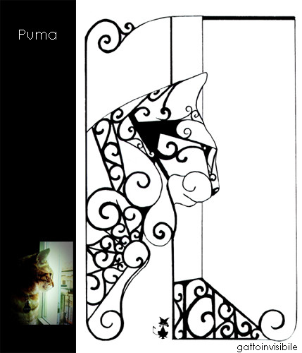 Puma at the window