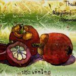 Mangostin, Tailand fruit