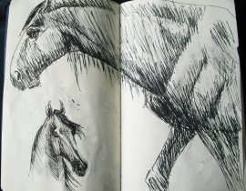 sketches #3