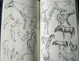 sketches #4