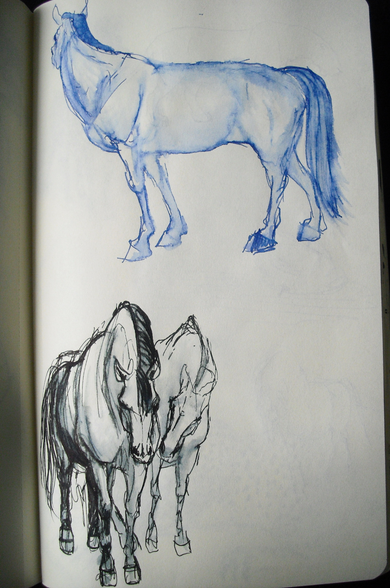 sketches #5
