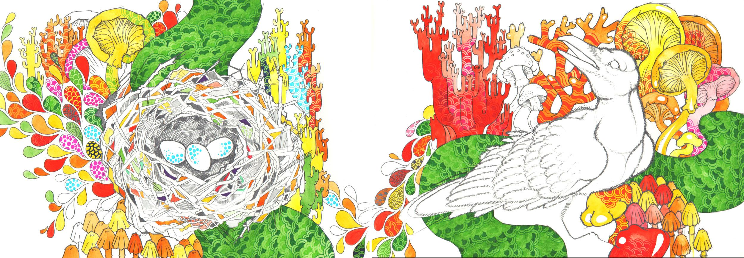 Fungi Crow-Anneris Kondratas