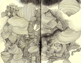 Imaginary Structures
