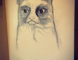 Grumpy Cat Study