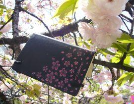 (日本語) 桜レポート