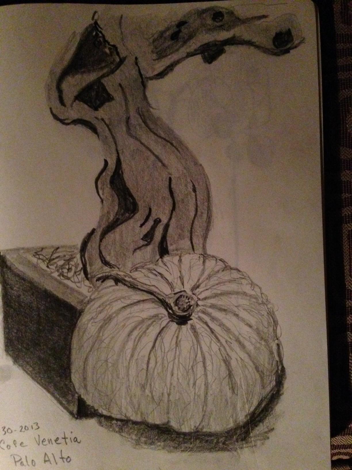 Pumpkin and driftwood