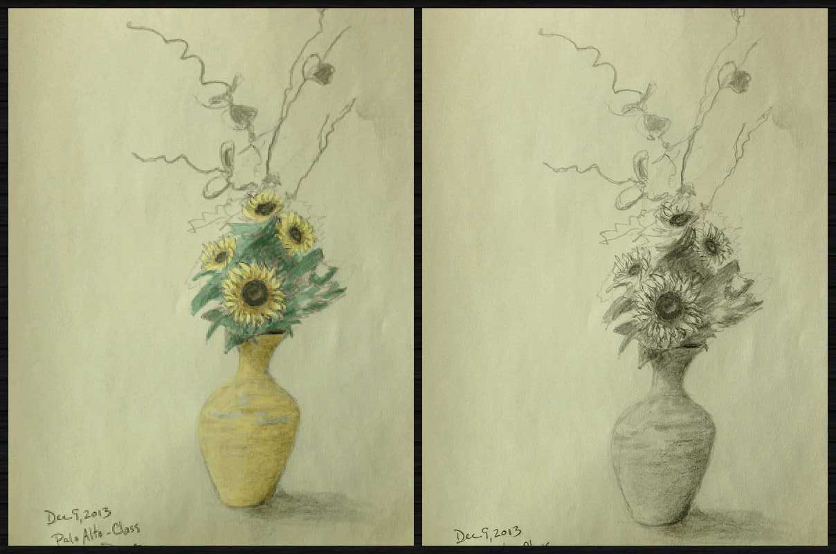 Sun Flowers Collage