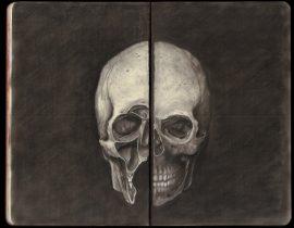 Study of Human Skull (Inspired by Leonardo da Vinci)