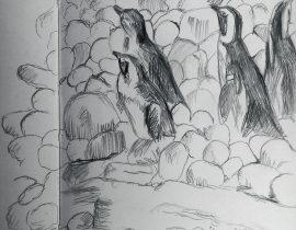 Penguin Sketch