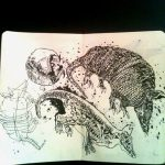 Estudo de Anatomia  Tatu bola /  armadilho  / Dasypodidae