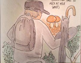 Mr Mushroom in Action