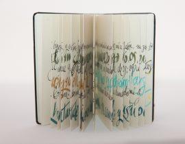The Psalms Notebook