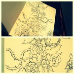 roses & Moleskine