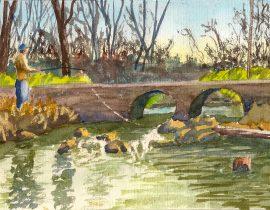 Fishing in the Severn Run