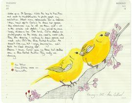 All My Beautiful Boys . Canary