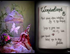 My WonderLaNd Is…. <3