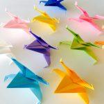 my colourful Xwing fleet