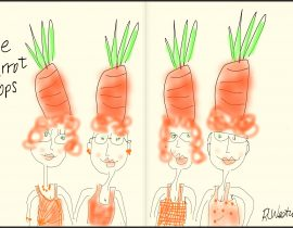The Carrot Tops