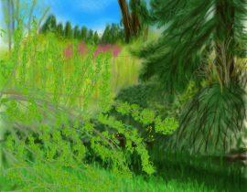 springtime in my backyard