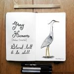 Harriet the Grey Heron