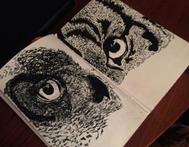 Owl observation in small sketchbook