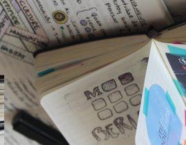 Your diary halfway through 2016
