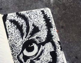tiger eye in brush pentel pocket