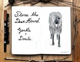 Flora the deerhound.