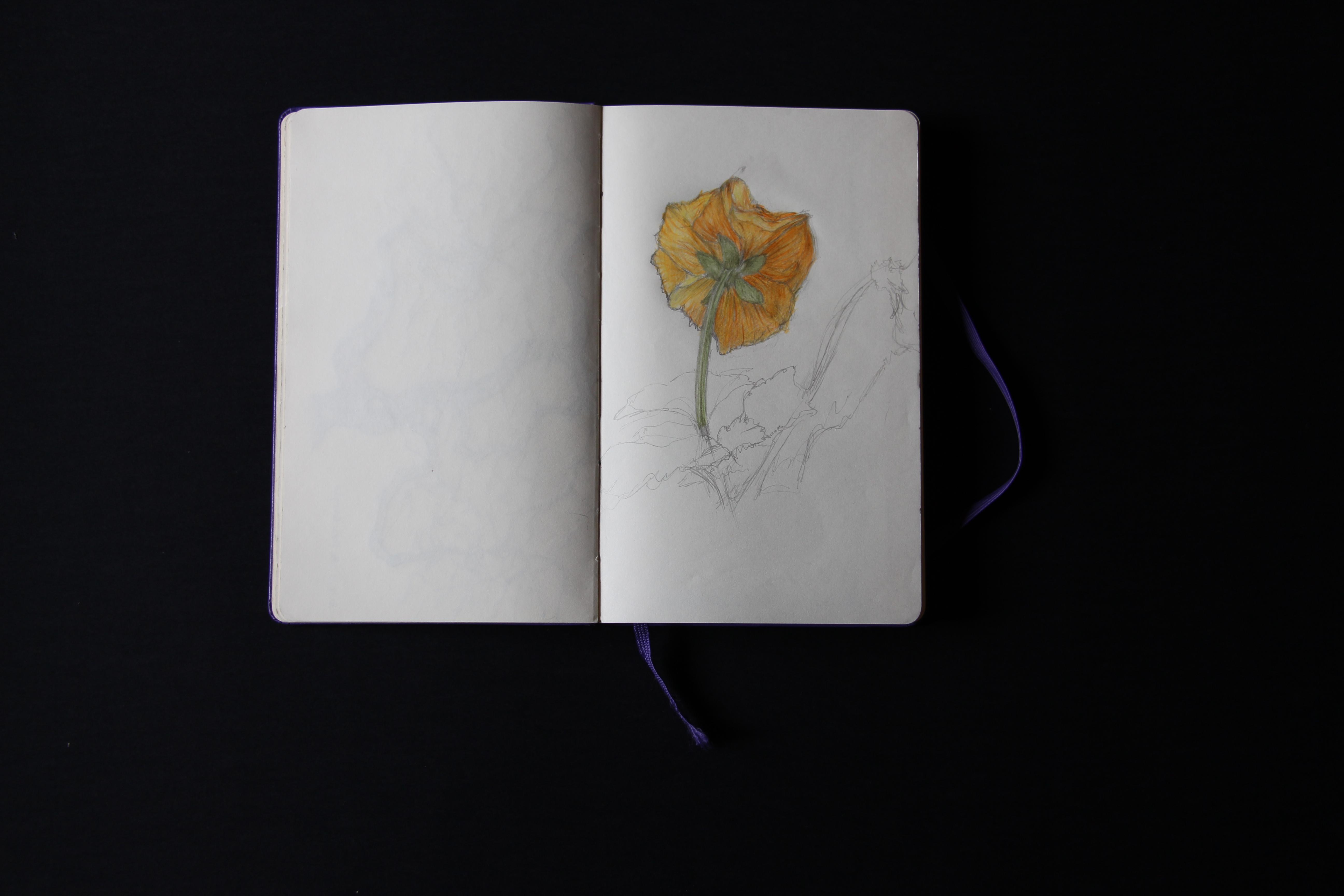 Linear flower