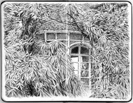 la maison dans les feuilles – Home in leaves
