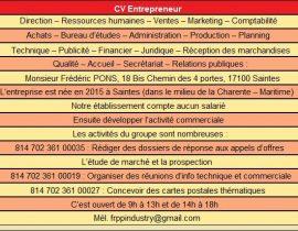 CV Entrepreneur V2