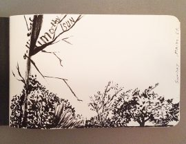 "Front page – pen and ink ""nature"" sketch"