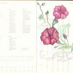 Flower plans
