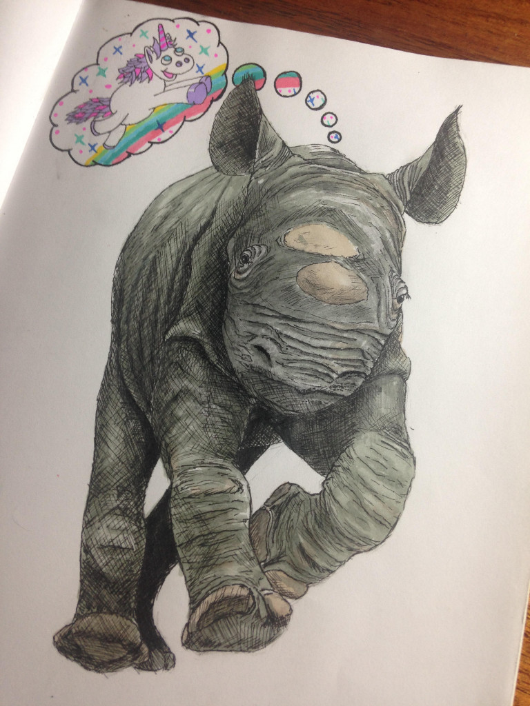 A Baby Rhino's Ontological Argument for the Existence of Unicorns.