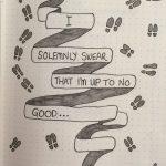 I solemnly swear…