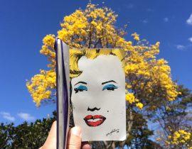 Marilyn Monroe, Andy & Ipê