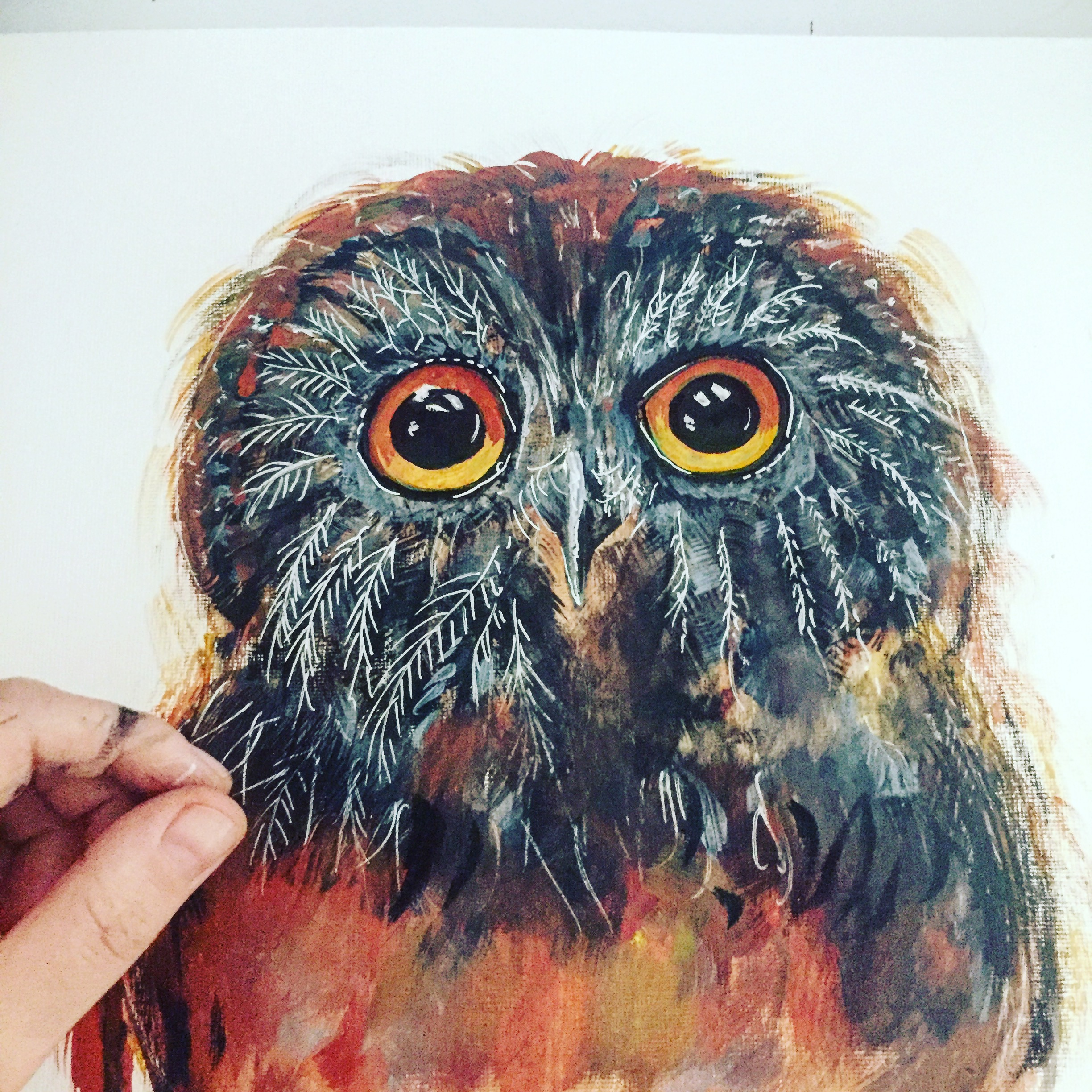 Owl in watercolour