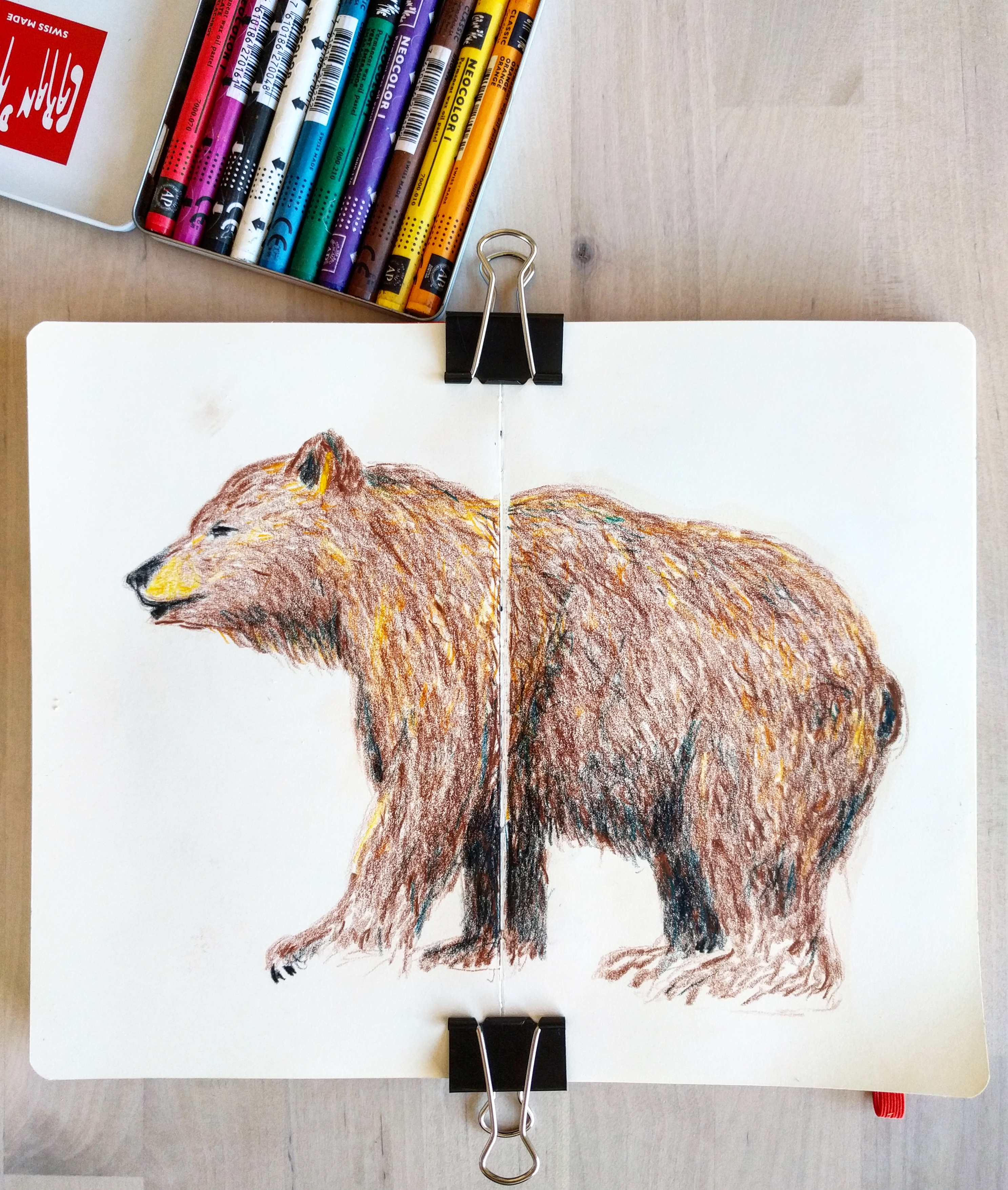 Bear with crayons