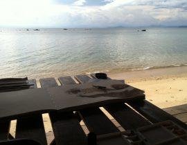 Beach lemur pt.3