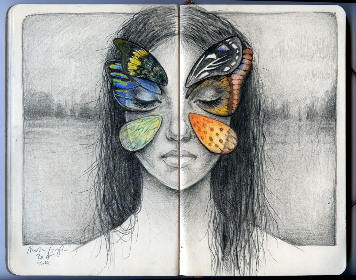 Motyle (Butterflies)